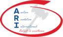 Auction Revolution International Logo